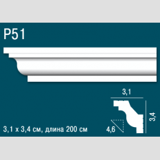 Perfect Plus P51